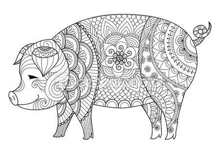 Zentangle dibujo de cerdo para colorear libro para adulto u otras ...