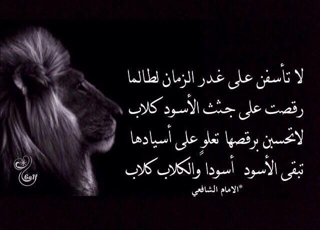 Pin By Khadijah Elshakankiry On اقتباسات Arabic Poetry Qoutes Life Lessons