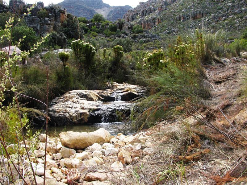 Suikerbossie Guest Farm | Ceres self catering weekend getaway accommodation, Western Cape | Budget-Getaways South Africa