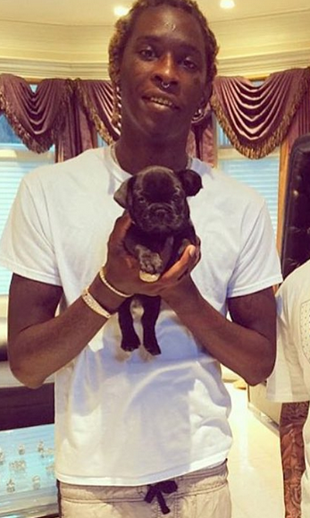 Pin On Rappers With Puppies-9784