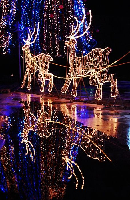 Beautiful outdoor christmas garden ornaments lovely christmas pics beautiful outdoor christmas garden ornaments icicle lightsxmas aloadofball Images