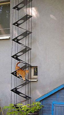 katzenleiter katzentreppe cats pinterest katzentreppe katzenleiter und katzen. Black Bedroom Furniture Sets. Home Design Ideas