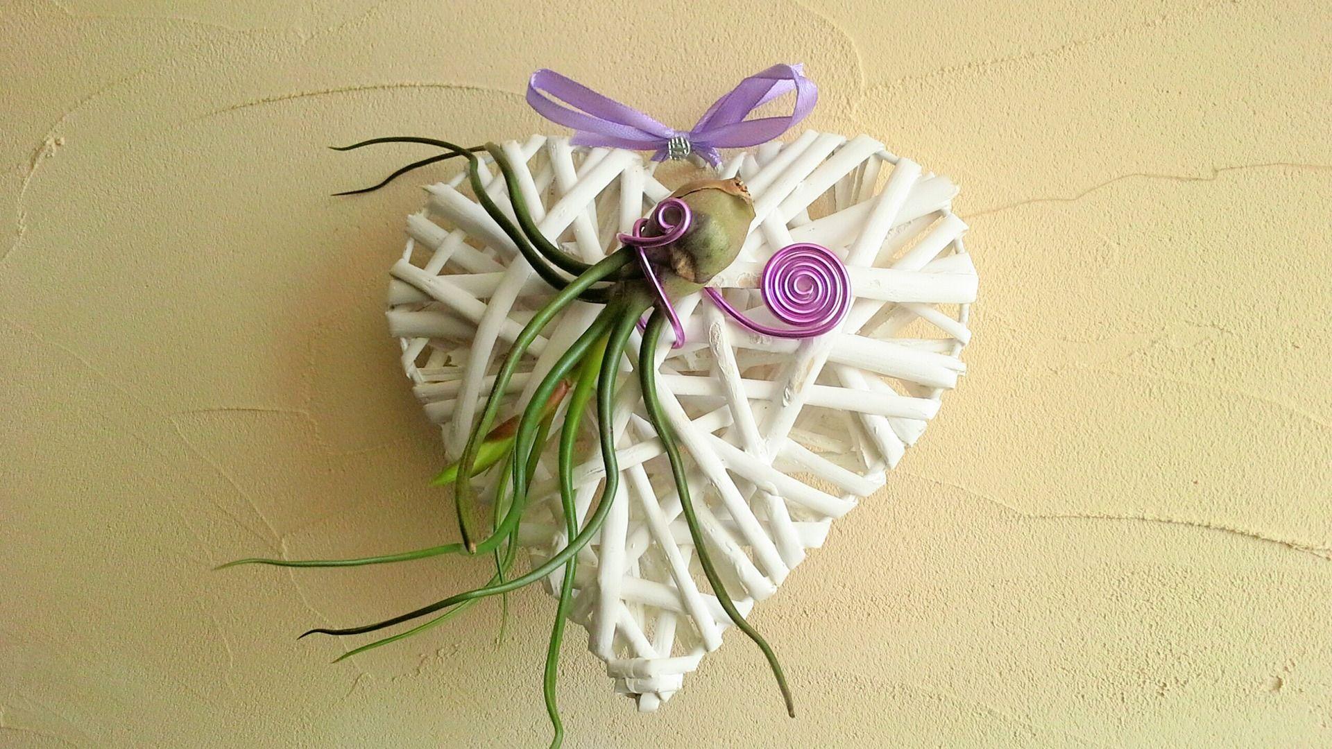 cadeau original tillandsia fille de l 39 air plante a rienne sur son petit coeur en osier. Black Bedroom Furniture Sets. Home Design Ideas