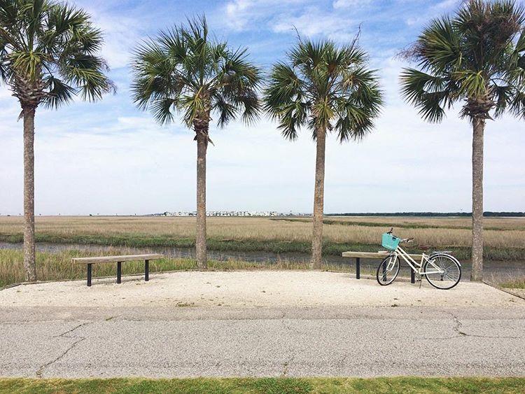 Self employment per Bike ride, Self employment, Riding