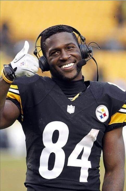 THE ONE AND ONLY PITTSBURGH STEELERS 2013   2014   2015   2016 ... dbcf89263