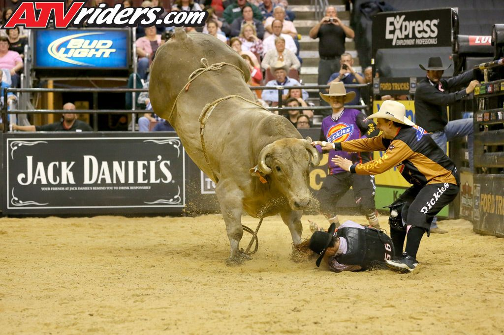 Professional Bull Riding Wallpaper