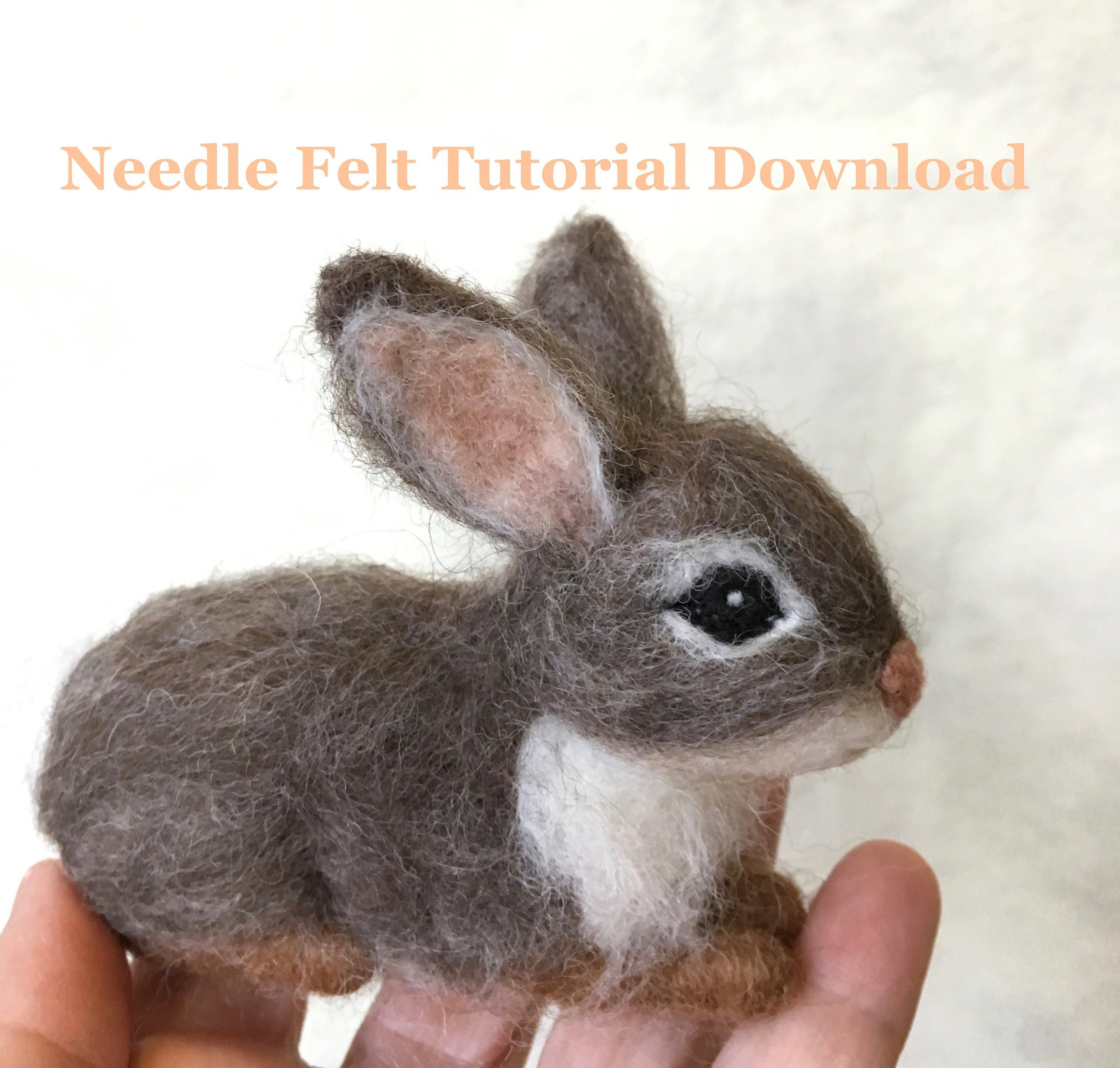 Tutorial Needle Felt Bunny Rabbit, Instant Download PDF, 12 Detailed Pages, 64 Photos