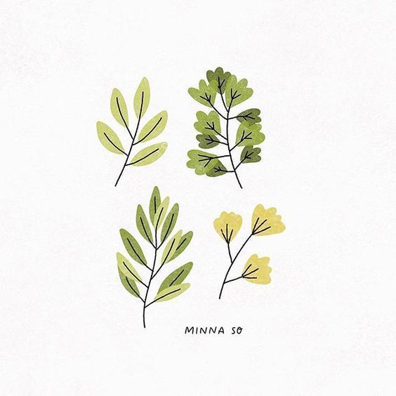 30 Ways to Draw Plants & Leaves -   8 plants Aesthetic drawing ideas