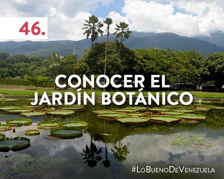 49 cosas que hacer en Caracas, Venezuela