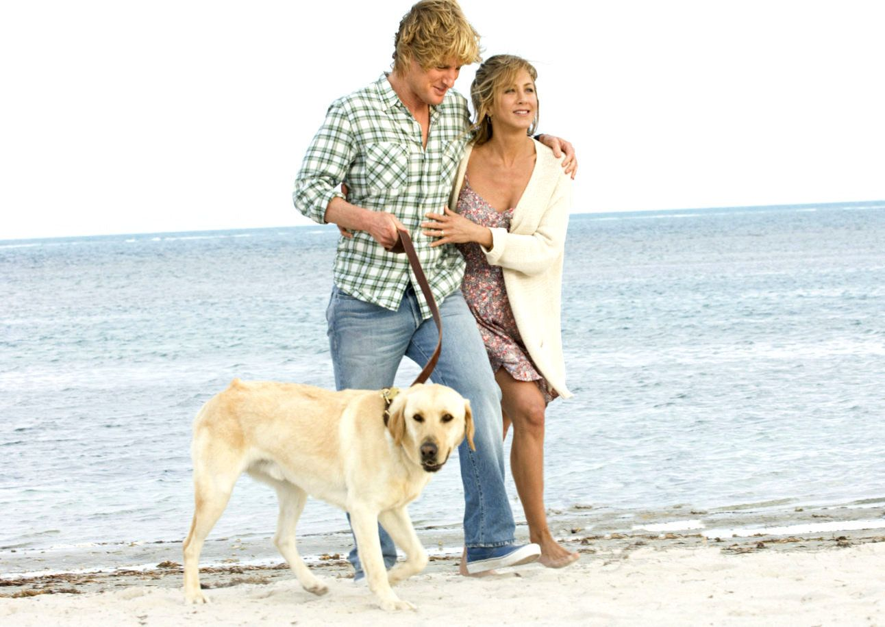 Http Images2 Fanpop Com Images Photos 5800000 Marley Me Wallpaper Marley And Me 2008 5807697 1292 916 Jpg Marley And Me Marley And Me Movie Dog Movies
