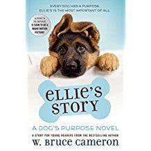 Wonderful Story About A Dog