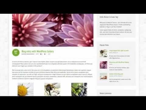 Natural - Powerful Responsive WordPress Theme + Free Download
