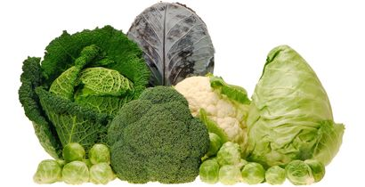 What do broccoli, cauliflower, Brussels sprouts, kale, cabbage, and Chinese cabbage have in common?    They're all members of the cruciferous, or cabbage, family of vegetables. And they all contain phytochemicals, vitamins and minerals, and fiber that are important to your health (although some have more than others.)    In fact, health agencies recommend that we eat several servings per week of cruciferous vegetables and for good reason..