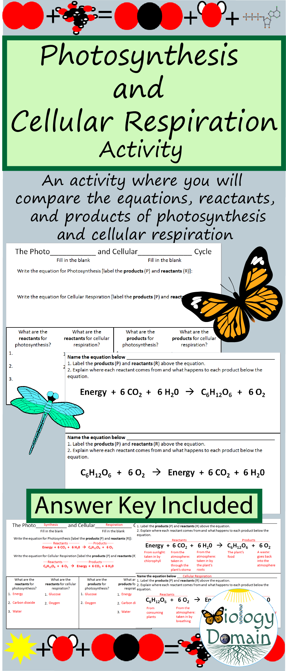 Photosynthesis and Cellular Respiration   parison with Answer Key moreover  additionally  as well photosynthesis and respiration venn diagram – tropicalspa co as well Photosynthesis and Cellular Respiration  parison Table   TpT further 19 Unique Photosynthesis and Respiration Worksheet Answers additionally  further Photosynthesis and Respiration Worksheet Answers  168125600008 moreover paring Photosynthesis and Cellular Respiration Worksheet 21 also Photosynthesis And Cellular Respiration Worksheet   Lobo Black also Chart  paring photosynthesis to respiration  this image is also a as well  besides Photosynthesis and Cellular Respiration   parison with Answer Key besides Cycles   systems  introduction  Teach further Synthesis   Cellular Respiration Diagram By Image Below in addition Photosynthesis and Cellular Respiration  parison Chart by A Thom. on comparing photosynthesis and respiration worksheet