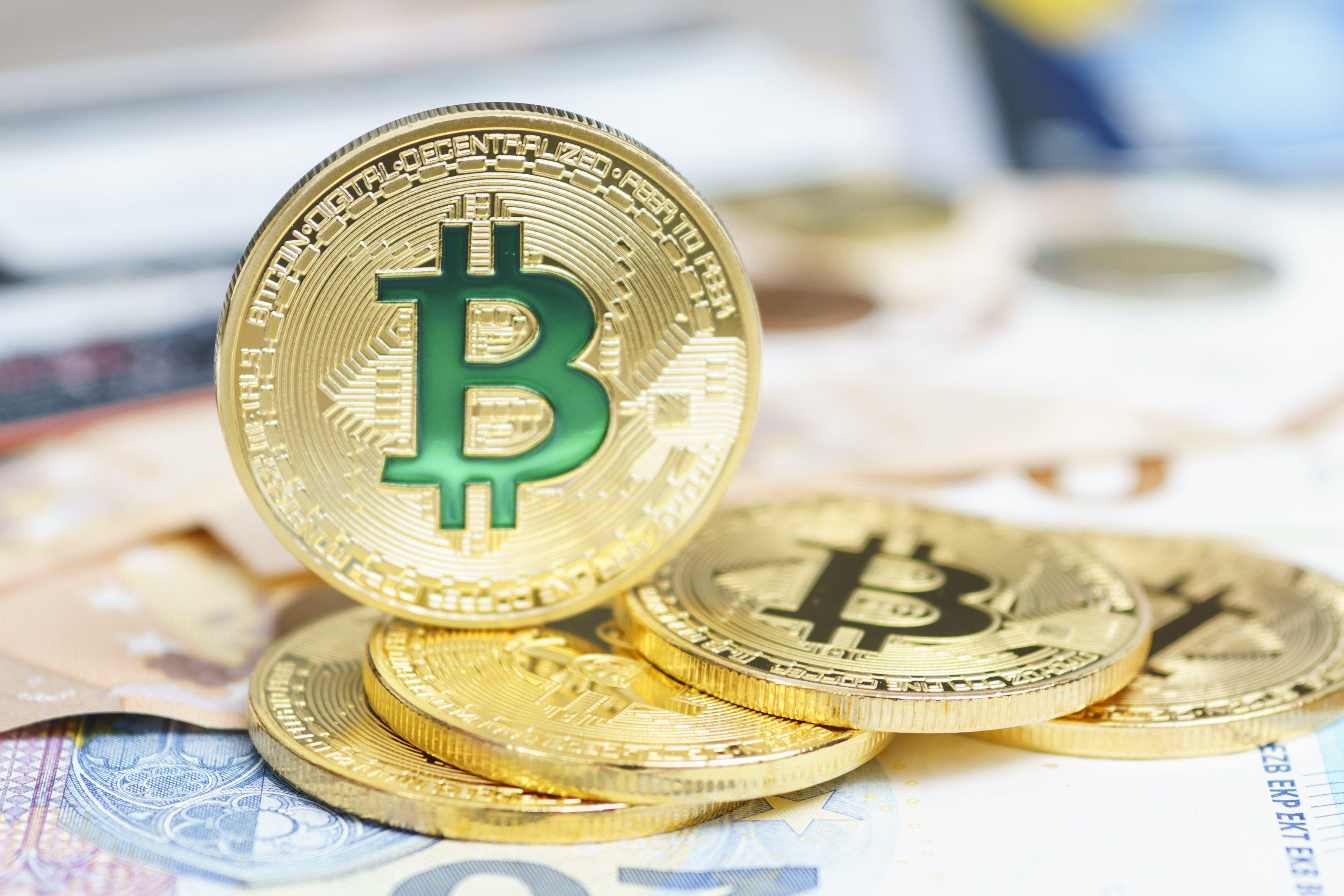 CryptoNews on Bitcoin chart, Bitcoin price, Cryptocurrency