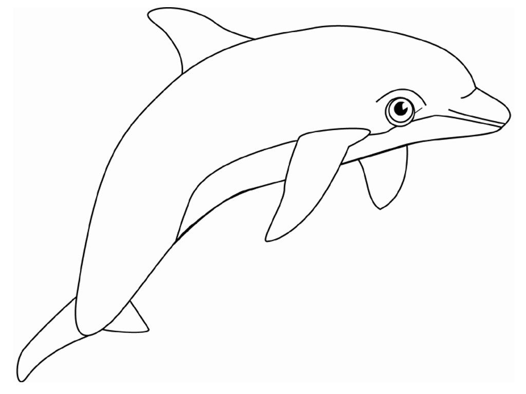 Dolphins Coloring Pages Realistic With Images Dolphin Coloring