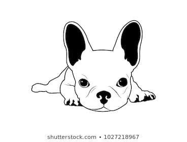 French Bulldogs Sketch Pugs