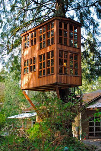 Per fare una casa ci vuole un albero casa sull 39 albero for Case bellissime esterni