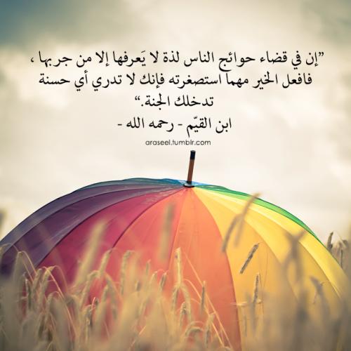 افعل الخير مهما استصغرته فإنك لا تدري أي حسنة تدخلك الجنة Wise Words Quotes Cool Words Quran Verses