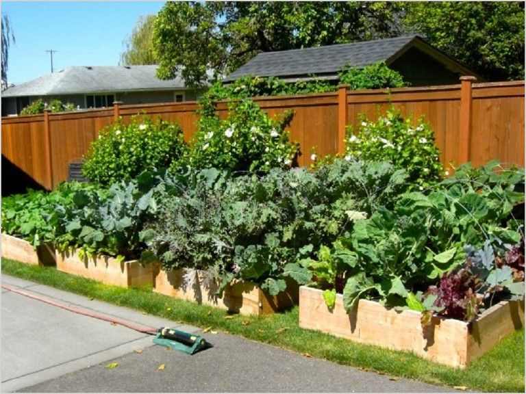 35 Creative DIY Vegetable Garden Designs Ideas #gardening #garden