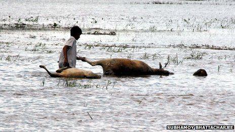 Assam floods, July 2013 Posted by floodlist.com