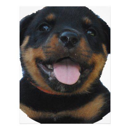 Rotweiler Puppy Zazzle Com Rottweiler Puppy Rottweiler