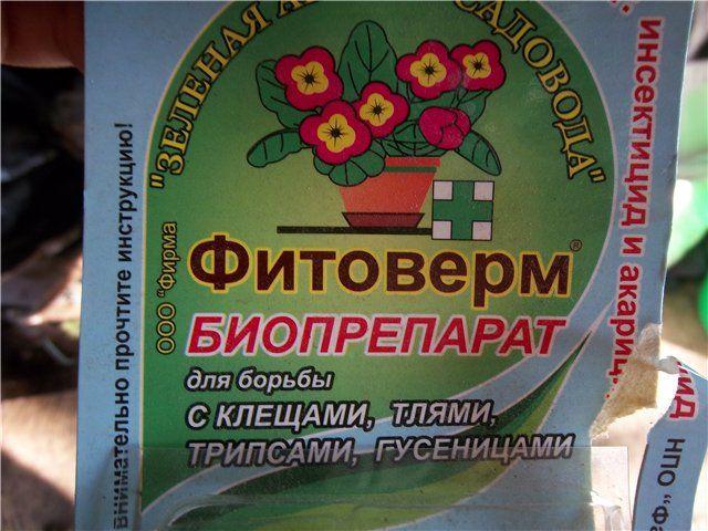 Фитоверм - популярное средство от паутинного клеща ...