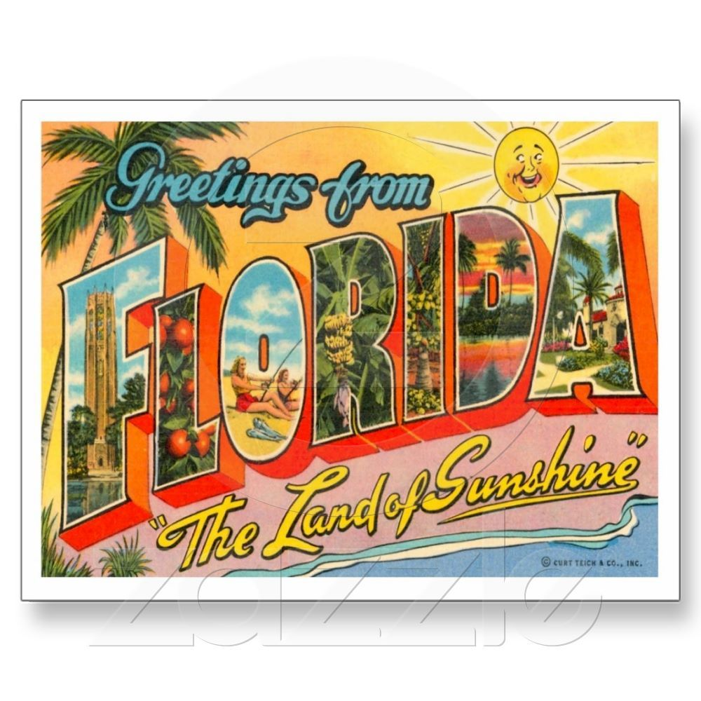 Greetings from florida fl post cards from zazzle designed greetings from florida fl post cards from zazzle kristyandbryce Image collections
