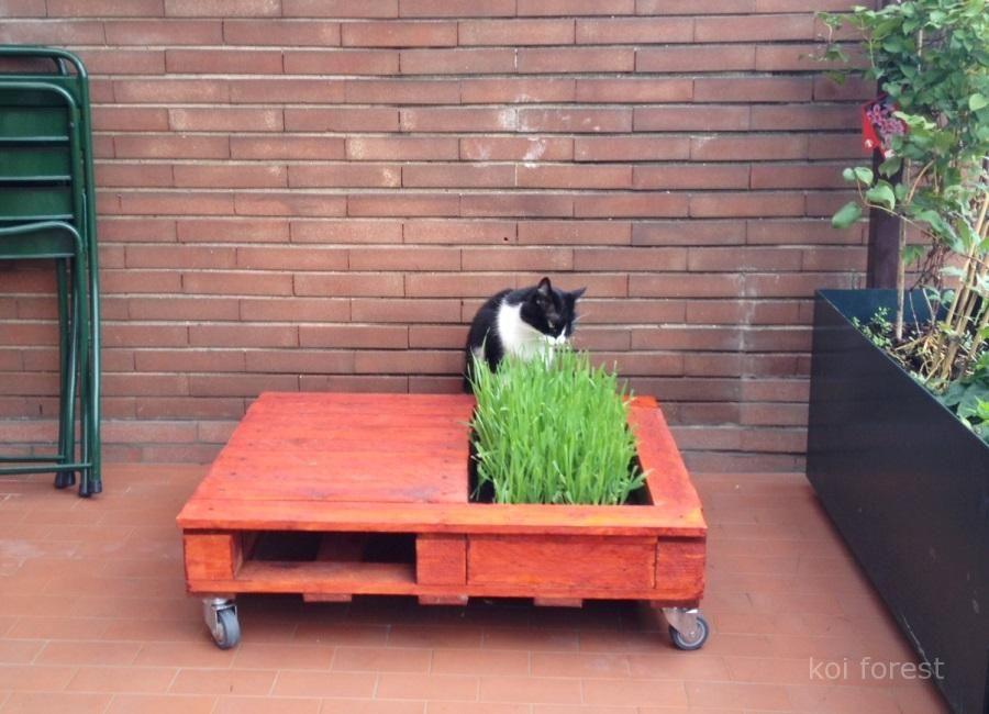 DIY table jardin palette, modèle qui peut être décliné de ...