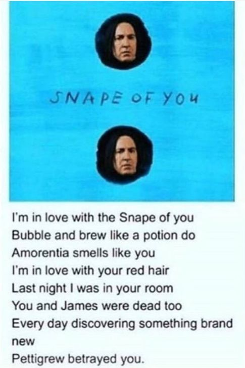 Snape From You Snape Snape Harry Potter Song Harry Potter Funny Harry Potter Puns