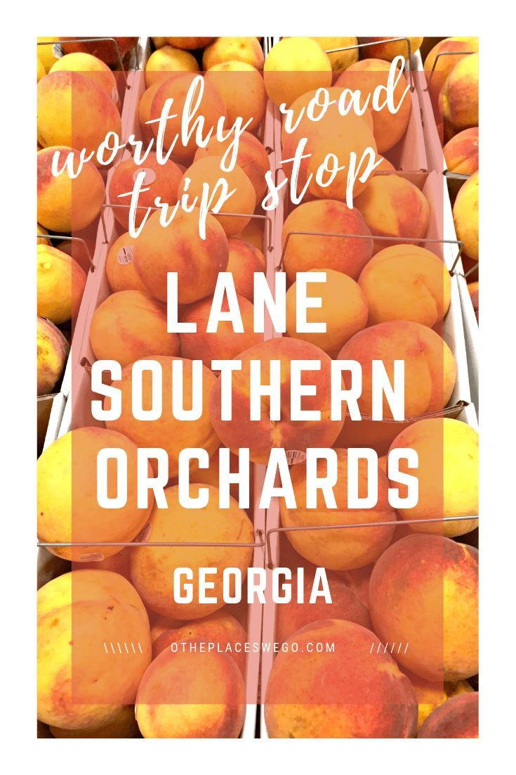 A worthwhile stop in Lane Southern Orchards has