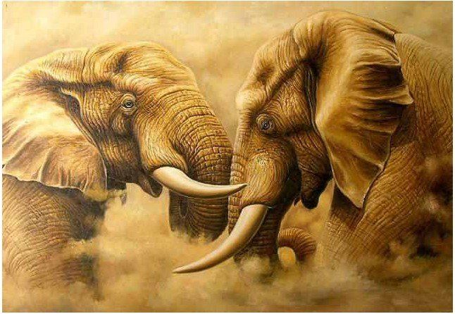 Font B Elephant B Font Font B Oil B Font Font B Painting B Font Jpg 646 446 Animal Paintings Elephant Painting Elephant Wall Art