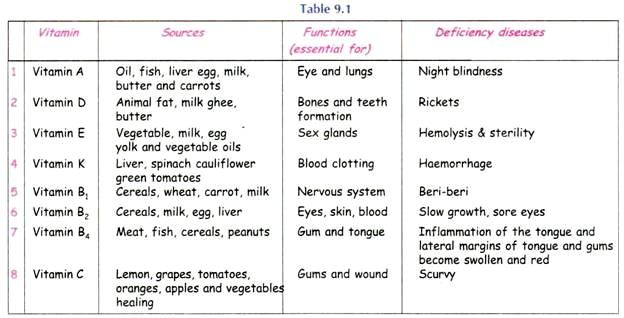Pin On Kid Vitamin And Minerals Essay Nutrition