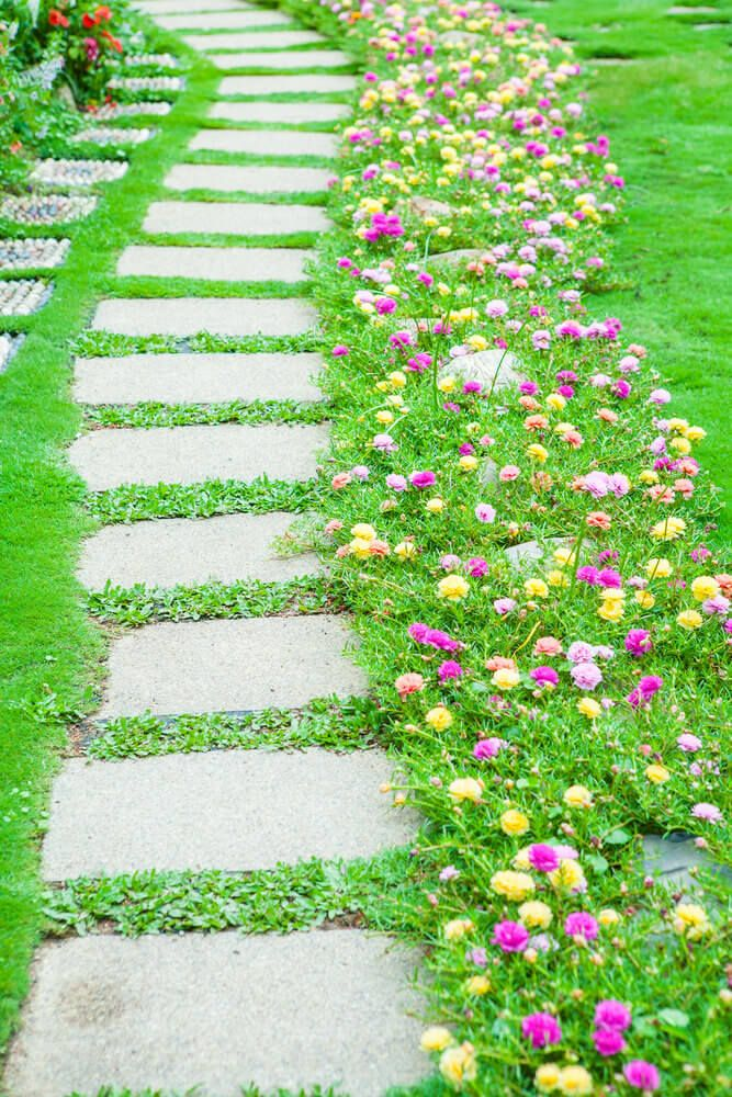 Photo of 75 Garden Path Ideas and Designs (PICTURES)
