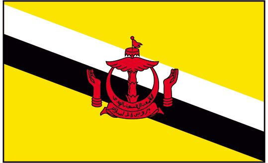 Flag Of Brunei History Of Brunei Flag Brunei Flags Brunei Flag Flag Brunei