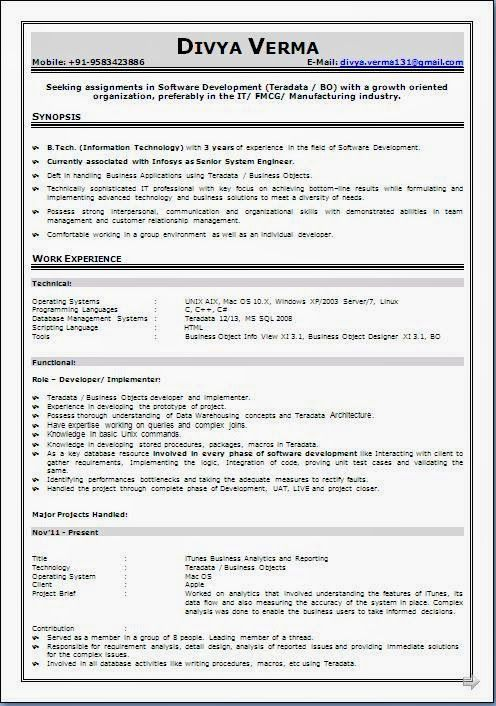 babysitter resume sample Beautiful Excellent Professional Curriculum - resume formats free download word format