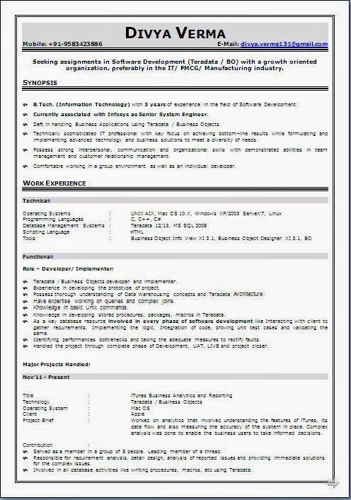 Babysitter Resume Sample Babysitter Resume Curriculum Vitae Resume Work Experience