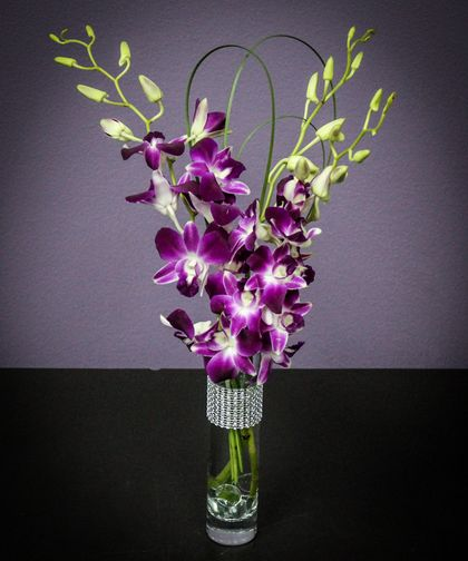 Pretty Woman Decked Out In A Rhinestone Bracelet This Budvase Of Dendrobium Orchids Is A Winner Fo Same Day Flower Delivery Flower Delivery Dendrobium Orchids