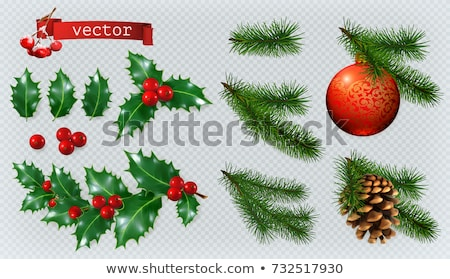 Christmas Decorations Holly Spruce Red Berries Christmas Bauble Conifer Cone 3d Realistic Vector Icon Set