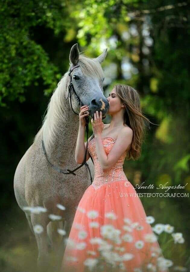 Пин от пользователя ڑوژآ بےیلآ на доске Horses   Лошадь и ...