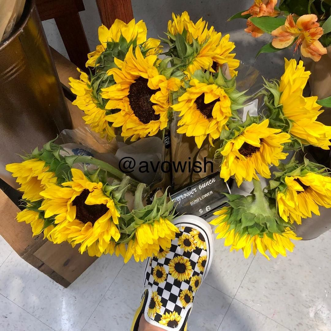 I Love My New Shoes Also Hi My Names Sarah And This Is My New Photography Account Customvans Vans Sunflo With Images Sunflower Vans Shoes Yellow Vans Sunflower Vans
