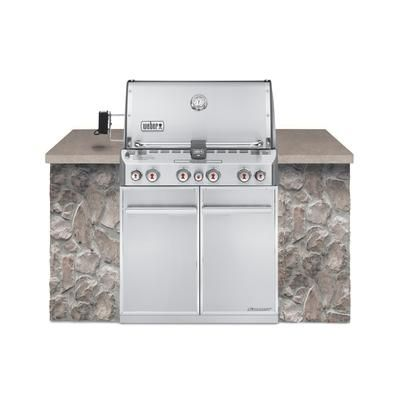Summit S 460 Built In Gas Grill Natural Gas Bbq 2499 The Summit S 460 Gas Grill Is A Built In Model Offer Natural Gas Grill Built In Grill Propane Gas Grill