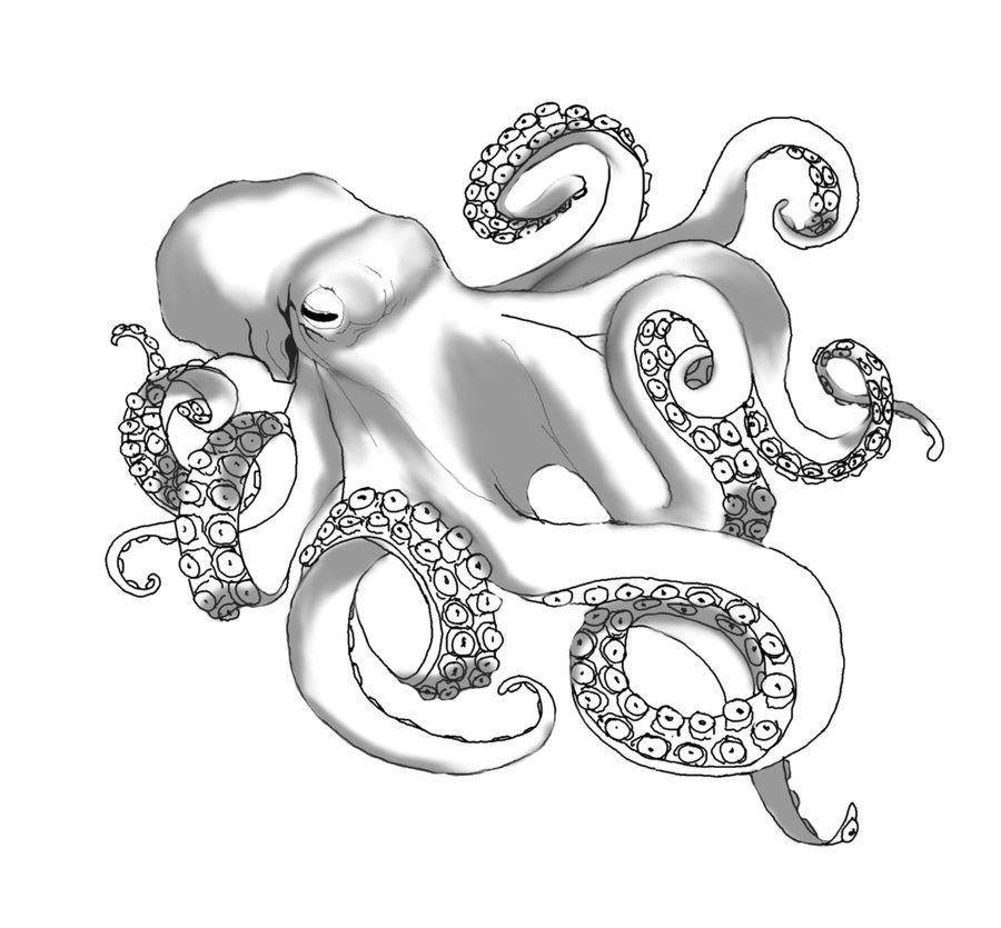 Pirates Of The Caribbean Kraken Silhouette Google Search Caribbean Google Kraken Octo In 2020 Octopus Tattoo Octopus Tattoo Design Kraken