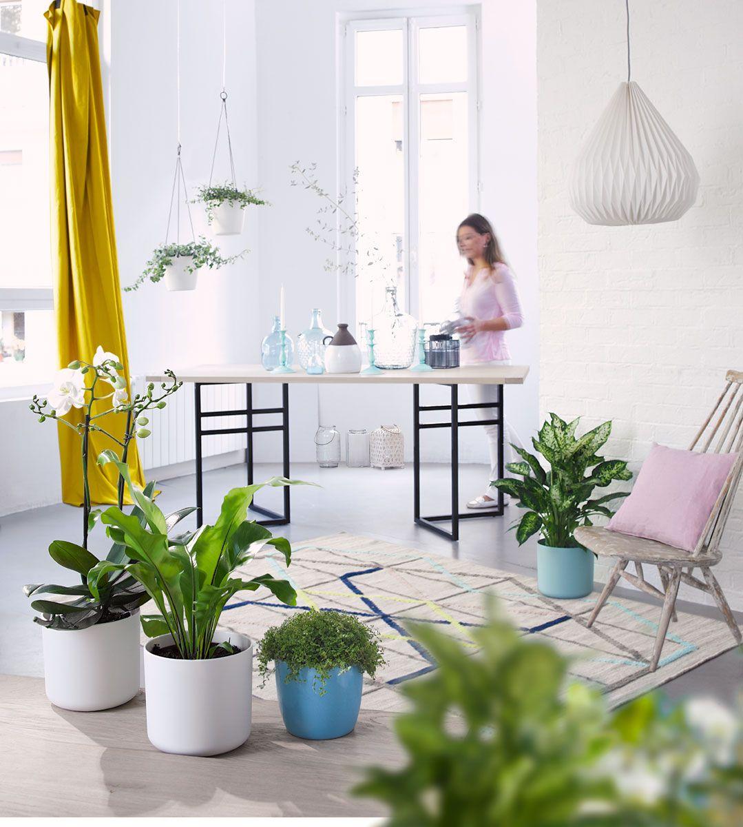 une gamme de couleurs pastel apportent de la fra cheur. Black Bedroom Furniture Sets. Home Design Ideas