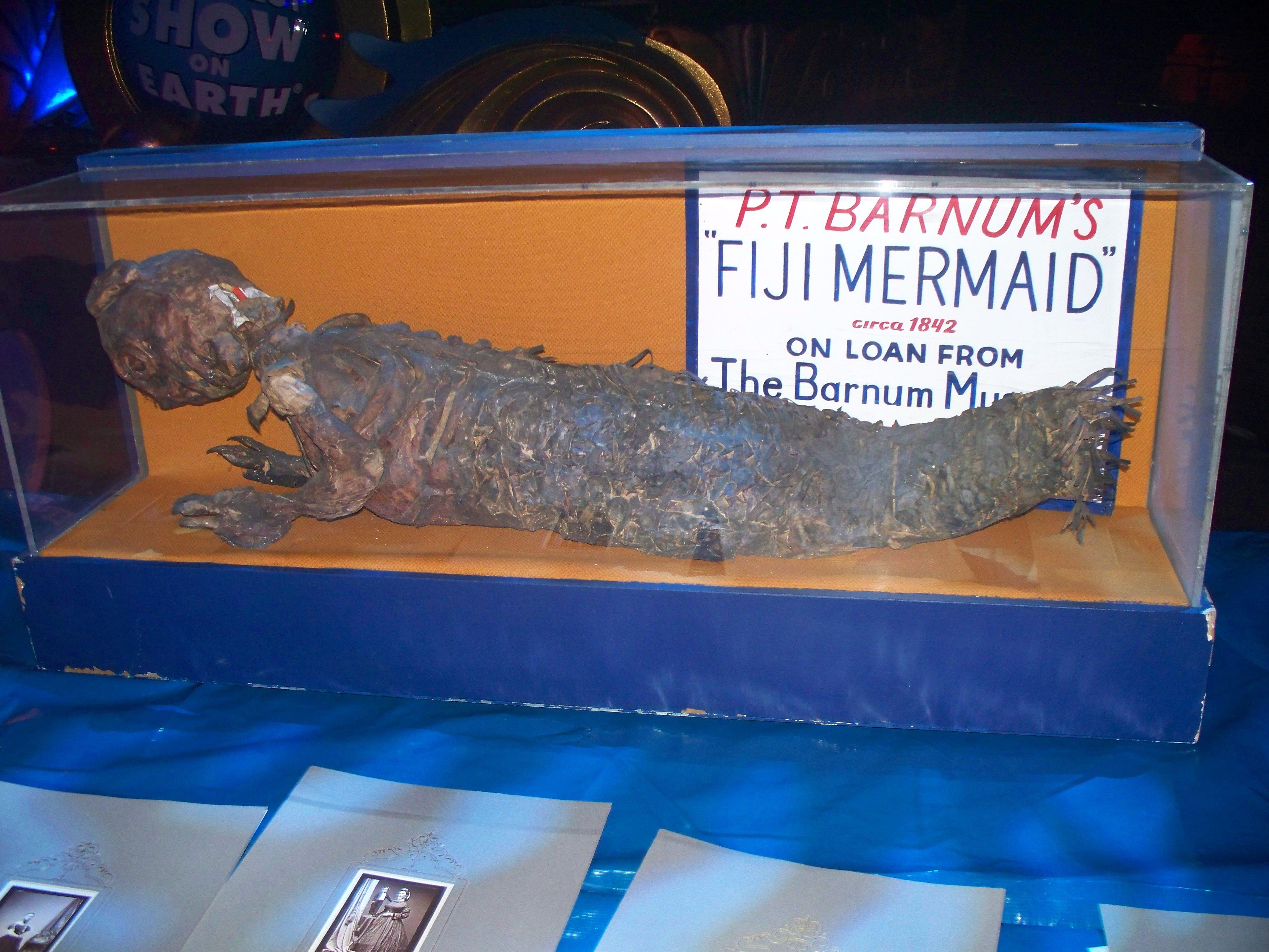 P T Barnum S Original Fiji Mermaid Mermaids In 2019