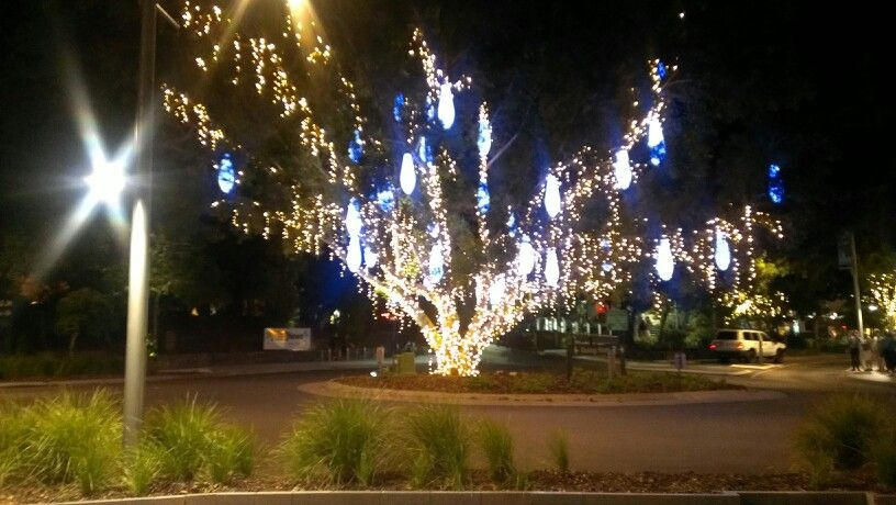 Hastings Street Noosa Christmas Lights Noosa Paradise Found Favorite Places