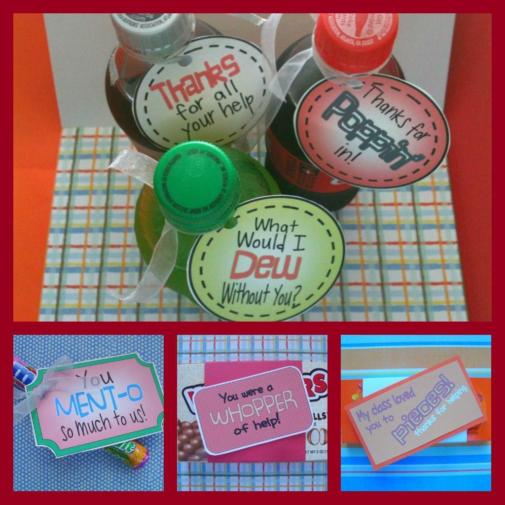 Classroom Volunteer Ideas : The freebies parent volunteers and gift