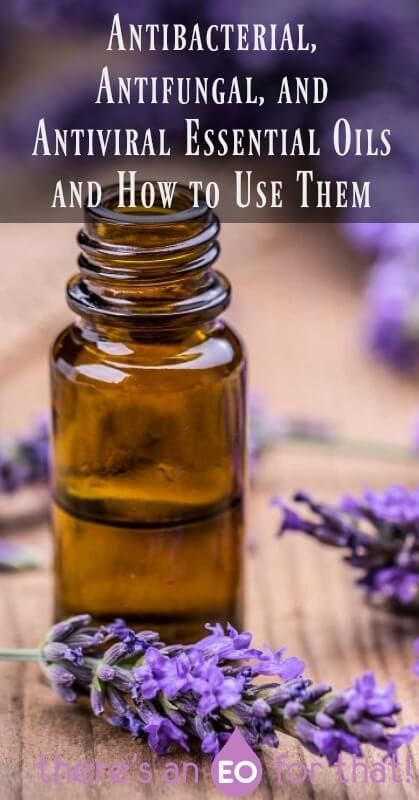 Antibacterial Antifungal And Antiviral Essential Oils And How To Use Them In 2020