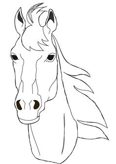Horse Head Horse Coloring Pages Horse Coloring Coloring Pages