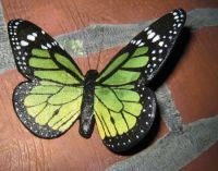 Make a Delicate Butterfly with Paper Mache Clay   ART